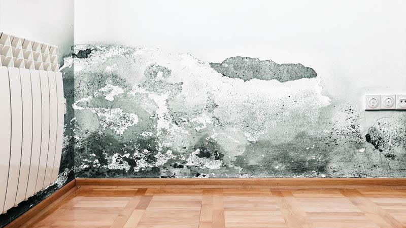 Rivestimenti in pietra umidità di risalita